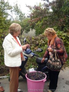 Виноград в дорогу